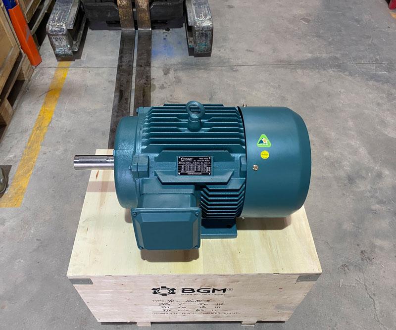 Motor điện bgm