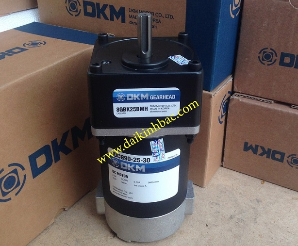 Motor DKM 25W