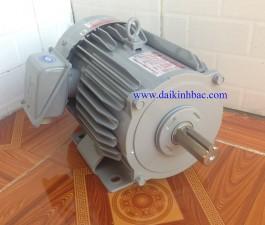 Động cơ Điện Mitsubishi Chân Đế