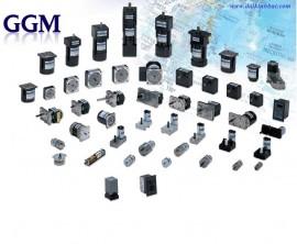 Động Cơ Giảm Tốc GGM