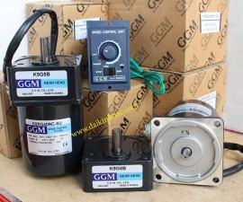 Motor GGM 1 Pha 220V