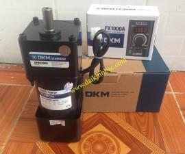 Motor Giảm Tốc DKM 1 Pha 220V
