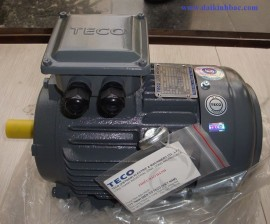 Motor Teco AESV