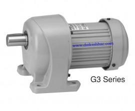 Động Cơ Giảm Tốc Nissei GTR G3 Serries