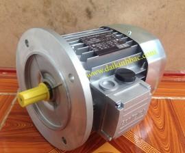Motor Điện Bonfiglioli Mặt Bích