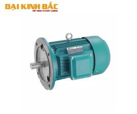 Mô tơ điện BGM Mặt bích B5