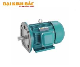 Mô tơ điện BGM B35