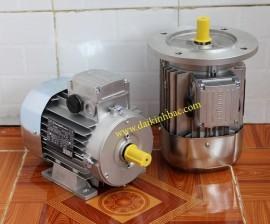 Motor Điện Bonfiglioli